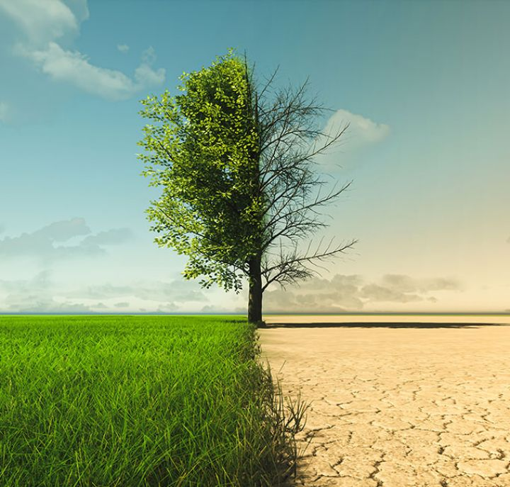 Climate change growth and drought