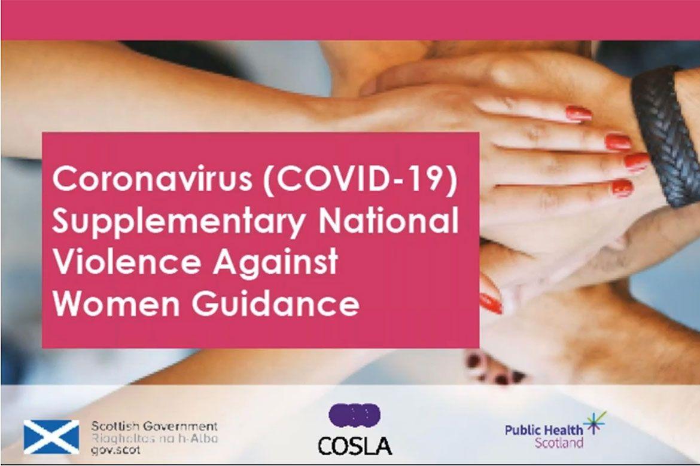 Screenshot from webinar on Violence Against Women guidance
